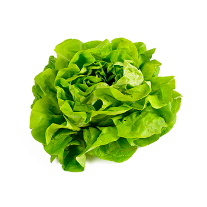 Menu Nachos Salade